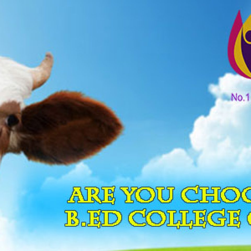B.Ed College in Haryana